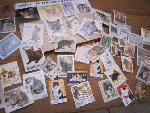 poststamps (cats)